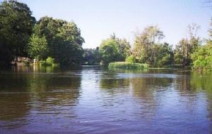 muskegon_river
