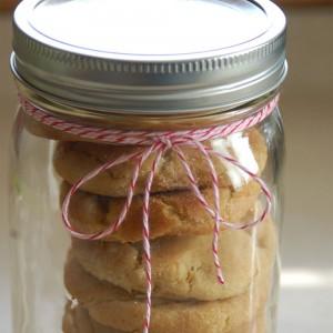 cookieinjar