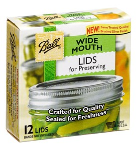 Wide Mouth Ball Jar Lids (Set of 12) Image