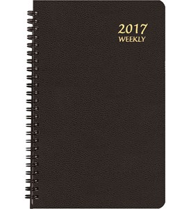 2017 Weekly Appointment Planner - Large Print Image
