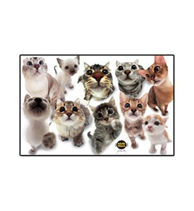 Cats Placemat Image