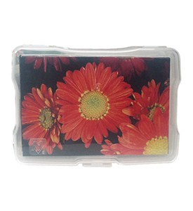 Acid Free Plastic Photo Case Image