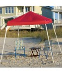 ShelterLogic Slanted Leg 8 x 8 Pop Up Canopy Tent