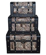 Animal Print Storage Trunks