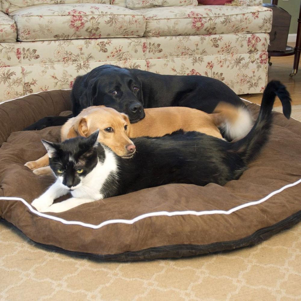 bolster dog bed cocoa in pet beds. Black Bedroom Furniture Sets. Home Design Ideas