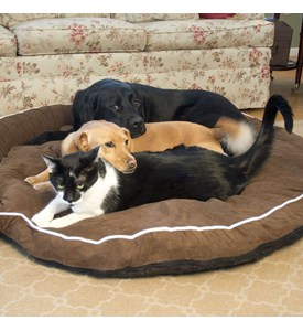 Bolster Dog Bed - Cocoa Image