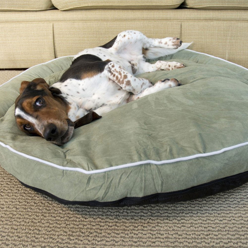 Bolster Dog Bed Moss In Pet Beds