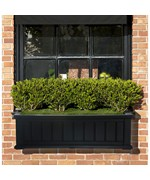 Cape Cod Window Box by Mayne