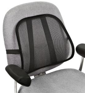 Lumbar Cushions at Organize-It
