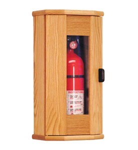 Extinguisher Cabinet - Clear Door Image