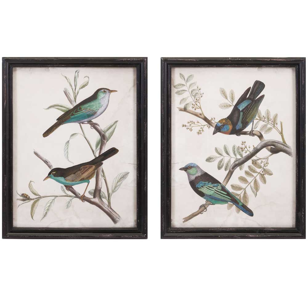 framed bird prints set of 2 in wall decor. Black Bedroom Furniture Sets. Home Design Ideas