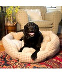 Luxury Dog Bed - Beige