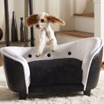 memory-foam-dog-bed Review