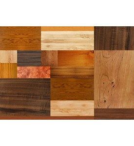 Patterned Mat - Exotic Woods Image