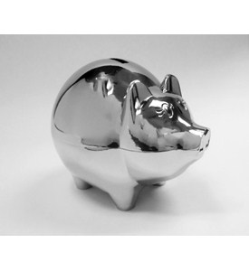 Piggy Bank - Shiny Nickel Image