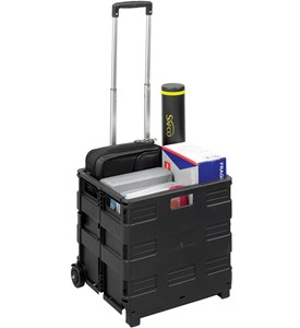 Folding Crate on Wheels Image