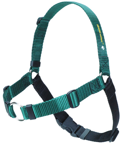 Softouch SENSE-ation No Pull Dog Harness - Green Image