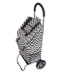 Shopping Trolley Cart - Trendy Designs