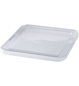 Small jewelry organizer plastic lid in jewelry trays for Jewelry tray with lid