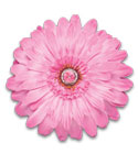 Magnetic Pink Locker Decor Flower