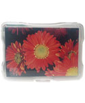 Acid Free Plastic Photo Case