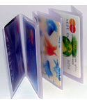 Clear Plastic Wallet Windows - Tri-Fold Accordion