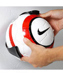 Ball Claw Wall Mount Soccer or Volleyball Holder
