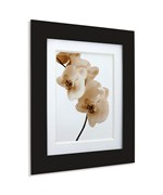 Pictura 8 x 10 Wood Photo Frame
