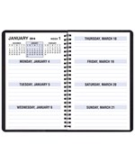 2015 Weekly Appointment Planner - Large Print