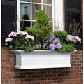 Yorkshire Window Boxes by Mayne