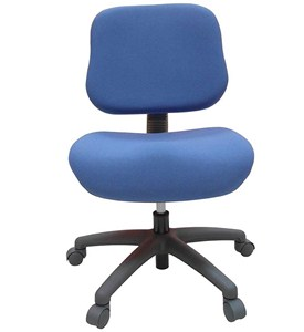 Youth Adjustable Office Chair Image