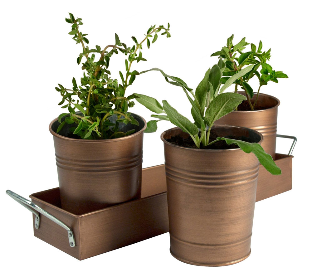 Herb Container Garden In Picnic