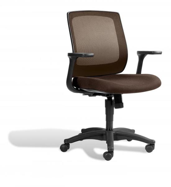 Low Back Mesh Desk Chair in fice Chairs