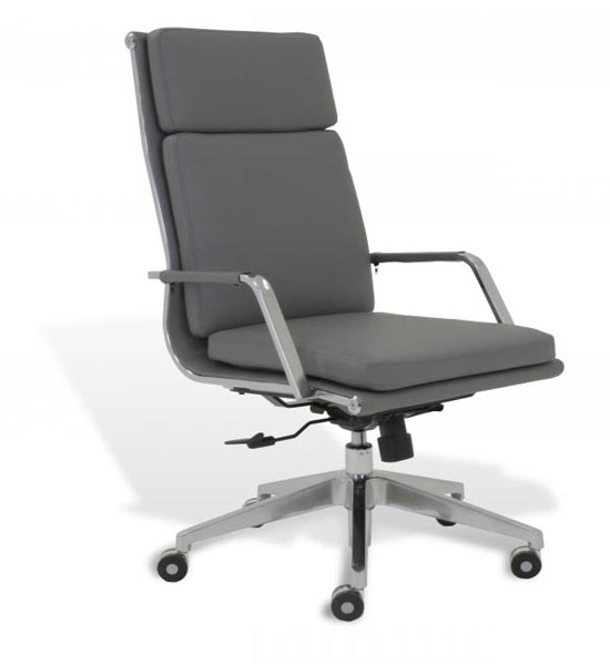 Soft Padded High Back Desk Chair in fice Chairs