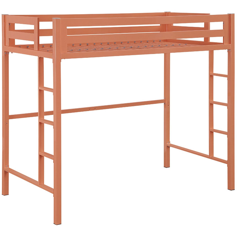 Metal Twin Loft Bed In Bunk Beds